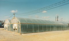 Morton's 'G' Series Greenhouses